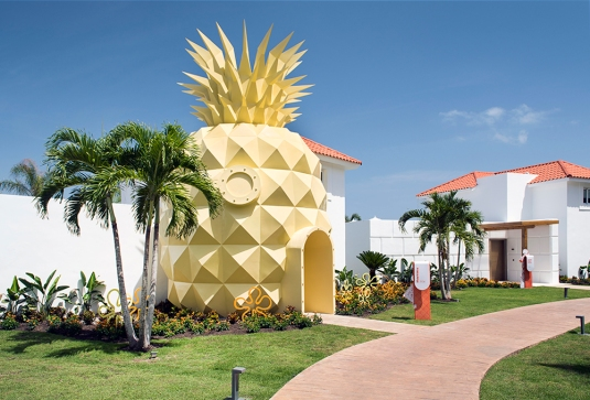 accom-Pineapple_2_NHPC (1)